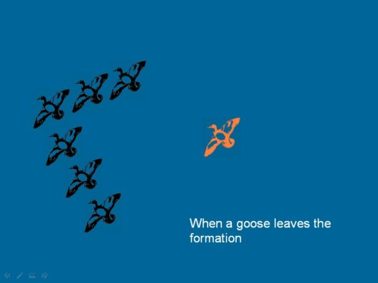 Lets Be Like The Geese