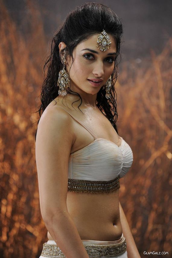 Tamanna Bhatia Slills From Movie Badrinath